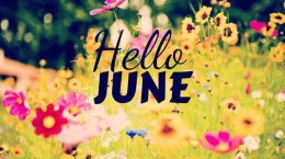 hello-june-we-heart-it-5